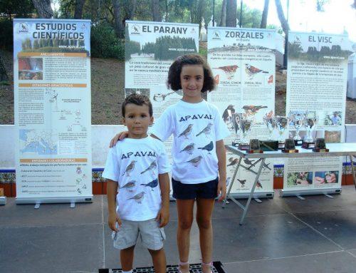Fotos del 25ª edició del Concurs Internacional de Reclam de Vila-real