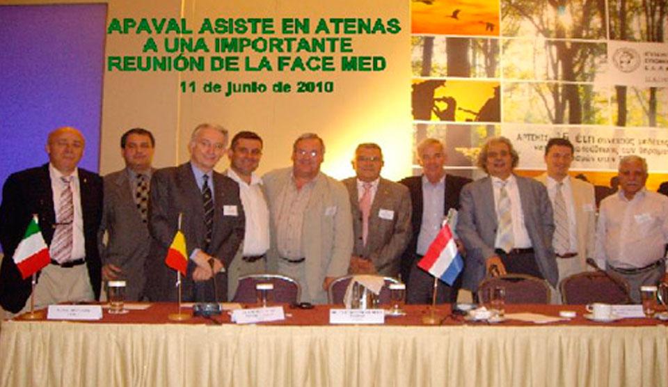 Reunión FACE Med.