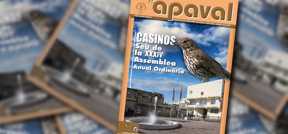 Revista APAVAL nº 31