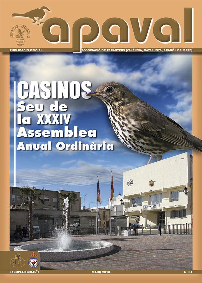 Revista APAVAL nº 31 - marzo de 2013