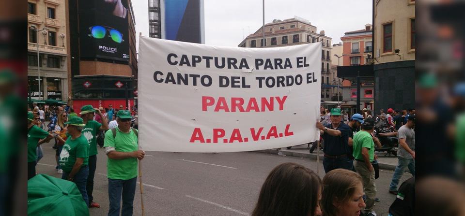 Apaval reivindica el Parany en Madrid