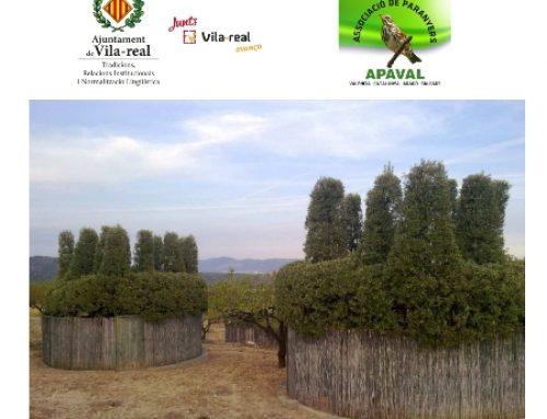 IX ESCOLA DE RECLAM PEPE SEBASTIÀ – VILA-REAL